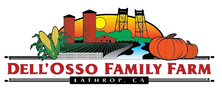 Dell'Osso Farms Christmas 2020 Dell'Osso Family Farms | Pumpkin Maze | Holidays on the Farm | Mud Run